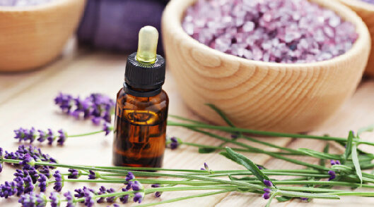 Lavender an essential oil for everything