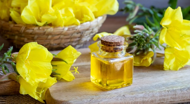 Evening primrose oil the best ally for women